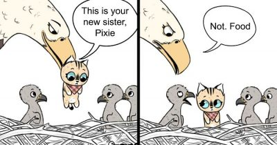 8 New 'Pixie And Brutus' Comics To Make Your Day