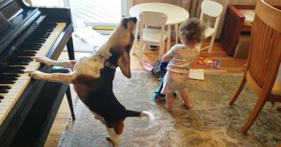 Dad Captured A Video Of His Baby Daughter Dancing To Their Dog Playing The Piano
