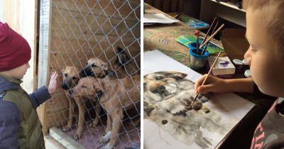 9-Year-Old Boy Sold His Custom Pet Paintings To Give Food And Materials To Shelter Animals