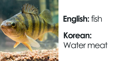 Hilarious Literal Translations Shared By Internet Users