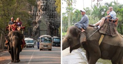 Angkor Wat Is Officially Putting A Stop To All Of Its Elephant Rides