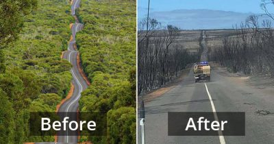 Before And After Photos Reveal The Damage Caused By Bushfires On Kangaroo Island