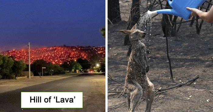 30 Photos Depict The Hell On Earth That Is Taking Place In Australia