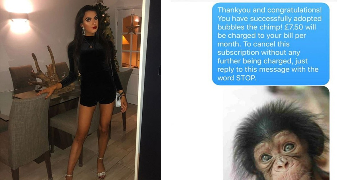 This Woman Tricked A Man Into Believing He's Signed Up To Adopt A Chimp