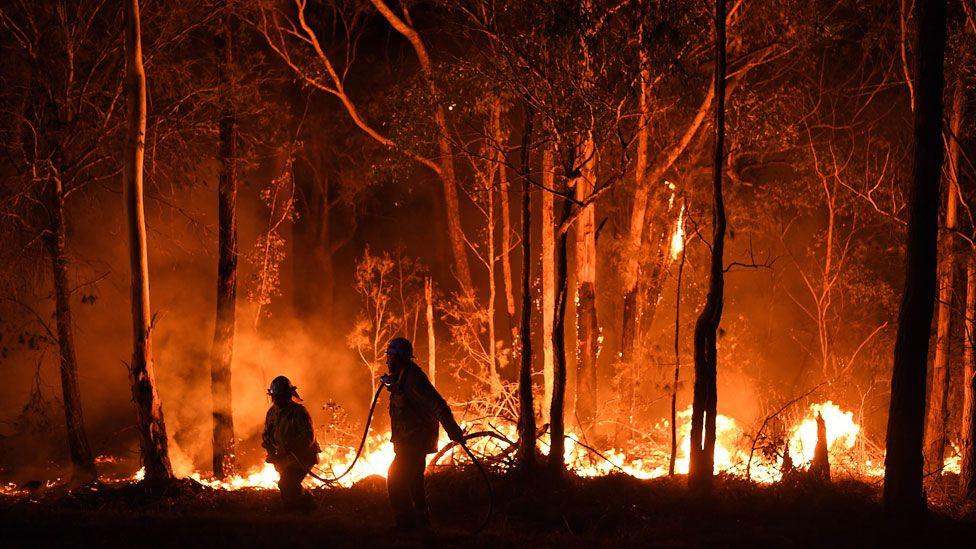 Australia-bushfire-2.jpg