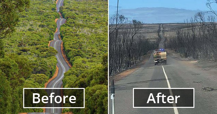 19 Before & After Pictures Of Australia Show How Much Damage Bushfires Have Already Done