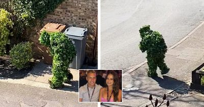Couple Caught Neighbor's Ingenious Attempt Of Escaping Lockdown By Dressing As A Bush