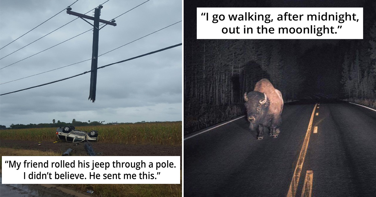29 Times People Prove Their Absurd Claims With Real Pics