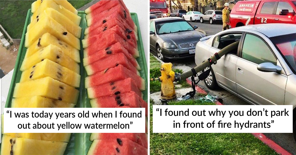 25 Fun Facts People Were 'Today Years Old' When They Knew About It