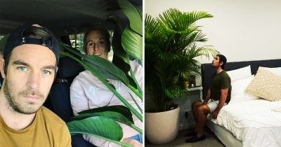 Husband's Rant On Wife's Jurassic-Sized Plants In Their Bedroom Goes Viral