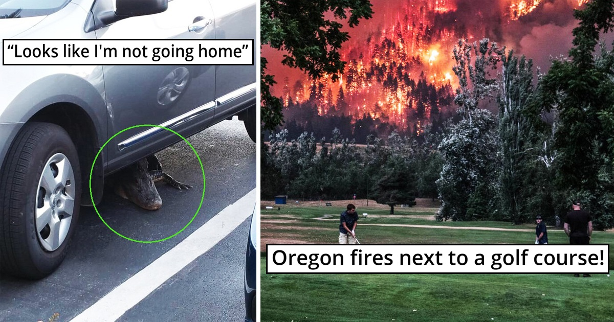 31 Scary Moments That Will Give You Goosebumps