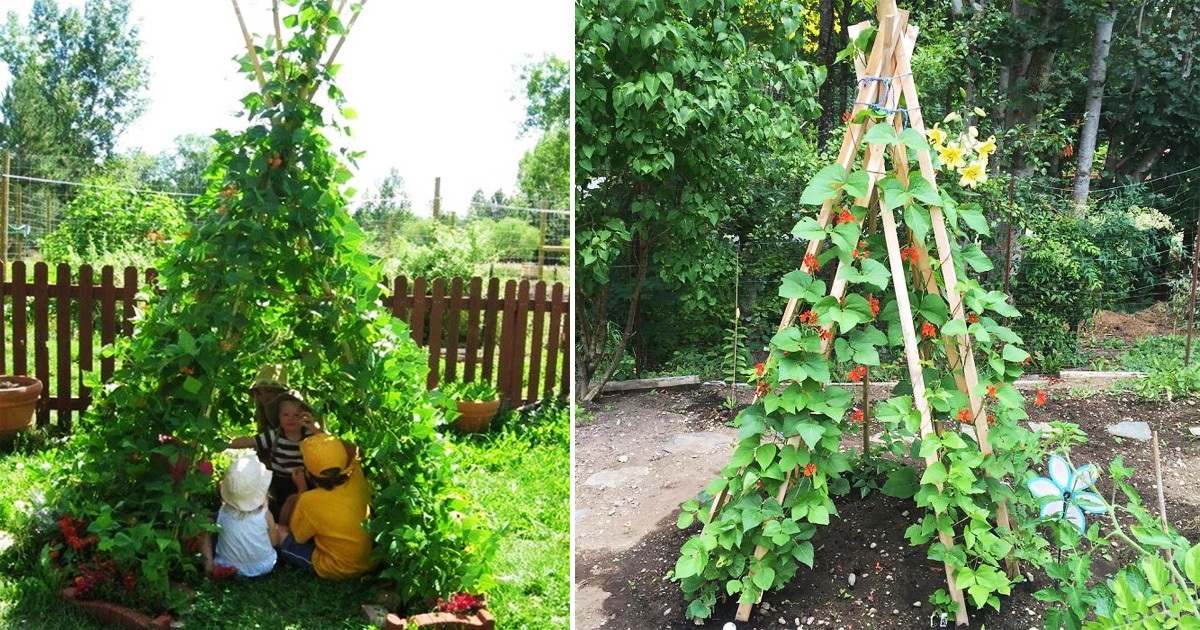 Parents Are Making Magical Bean Pole Garden Tents For Their Kids