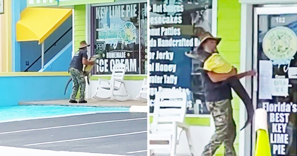 Man Casually Picks Up Alligator Back Into Shop And It Sums Up Florida So Well