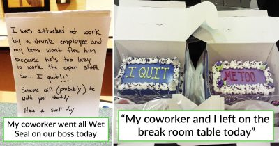 30 Employees Who Quit Their Job The Best Way They Know
