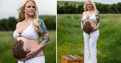 Woman's Maternity Photoshoot With 10K Live Bees On Her Belly Left Internet Stunned