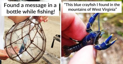 30 Interesting Findings People Had To Share With The Internet