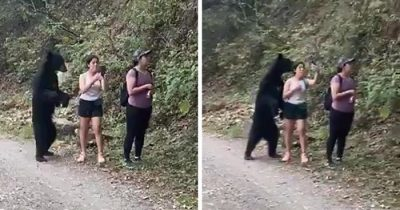 Hilarious Moment Giant Black Bear Sneaks Up On A Group Of Female Hikers In Mexico