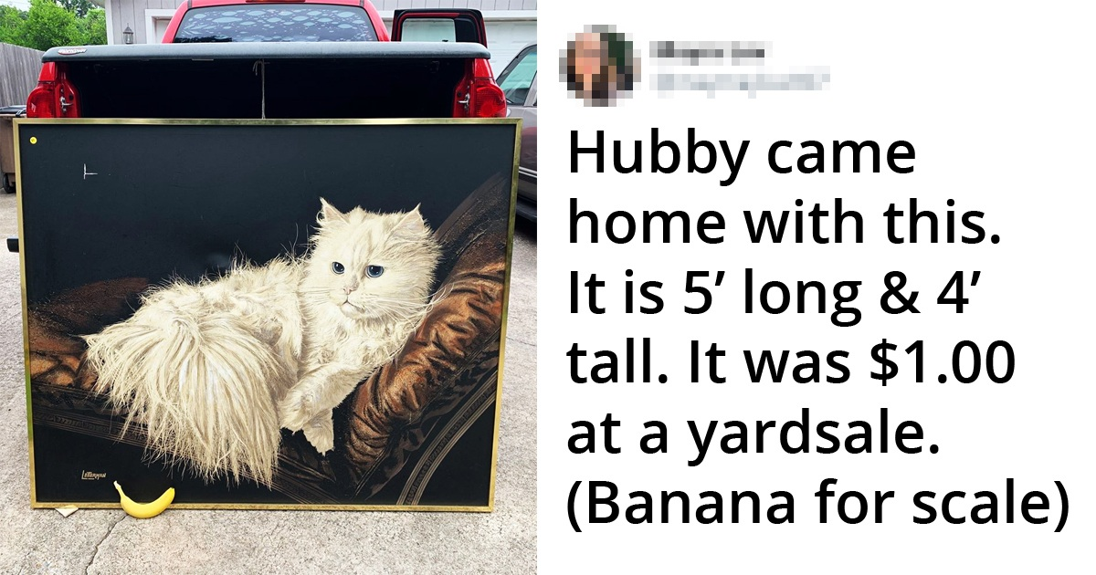 30 Treasurable Finds That People Couldn't Believe At Thrift Stores