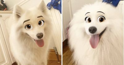 This New Snapchat Filter Turns Your Dog Into Disney Character