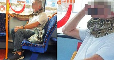 Man Spotted Wearing A Snake As Face Mask During Bus Ride