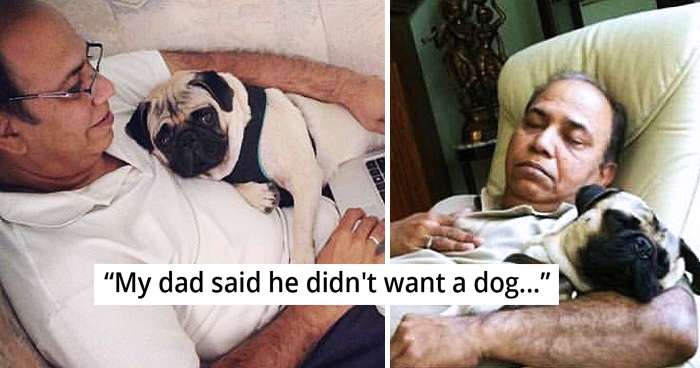30 Dads Who Said They Didn't Want Any Dog In The House