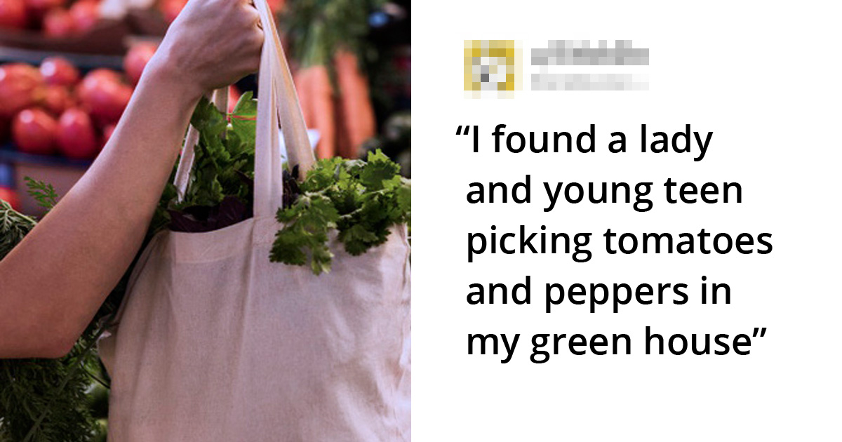 'I Stopped A Woman Who Was Stealing Veggies From My Green House, And People Are Calling Me A**hole'