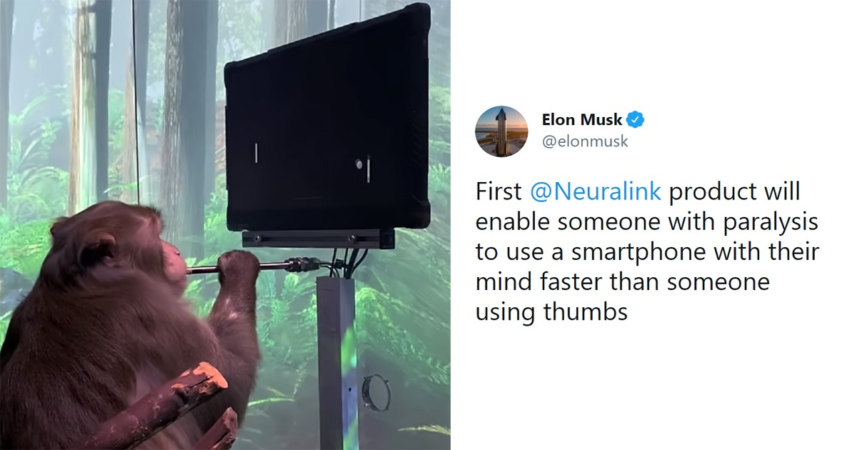 Elon Musk's Neuralink Shows Off Monkey With Brain Implants Playing Pong With Its Mind