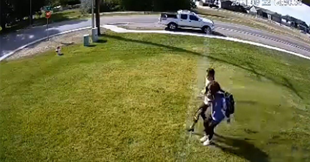 Homeowner Slammed For His Cruel Method To Stop People Walking Across His Lawn
